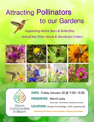Attracting Pollinators to our Gardens